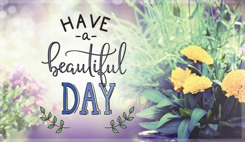 34129-ccc_HaveBeautifulDay.1100w.tn.jpg